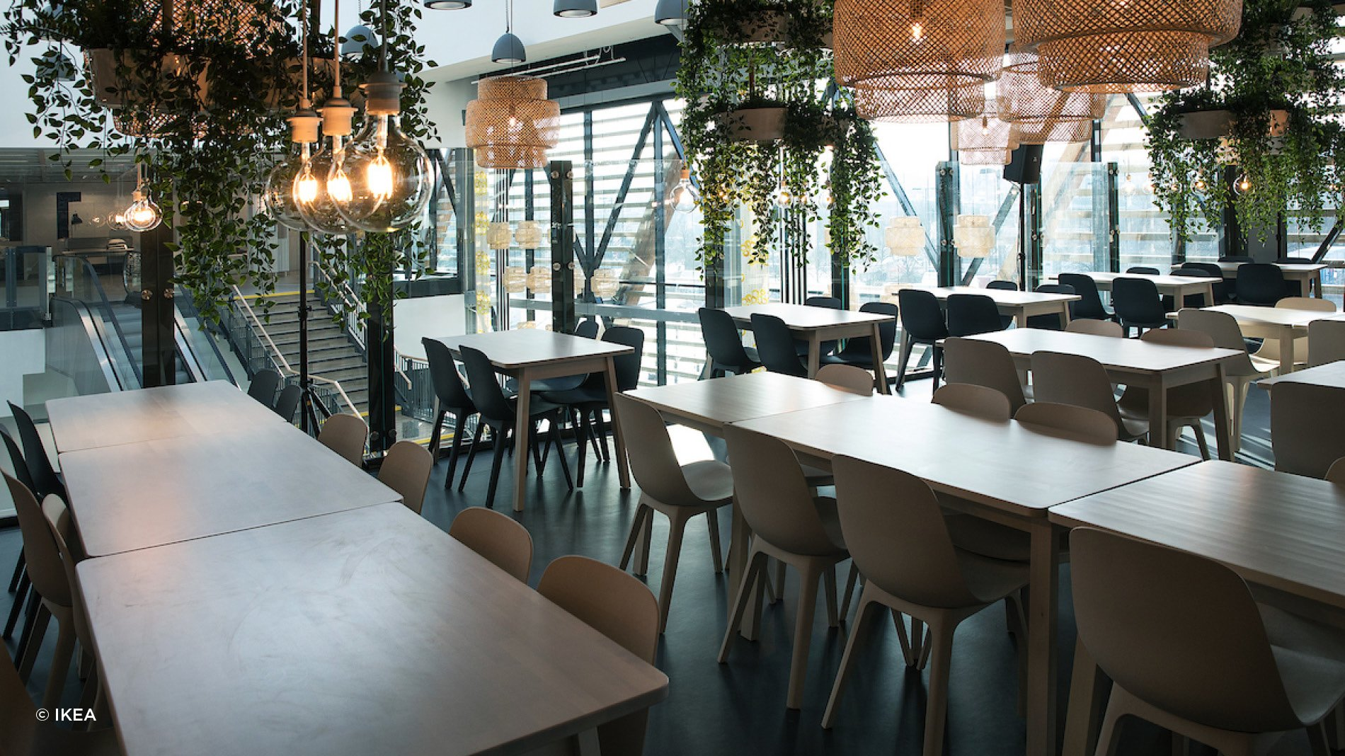 Wooden furniture, plants and lighting at IKEA's most sustainable store in the UK in Greenwich