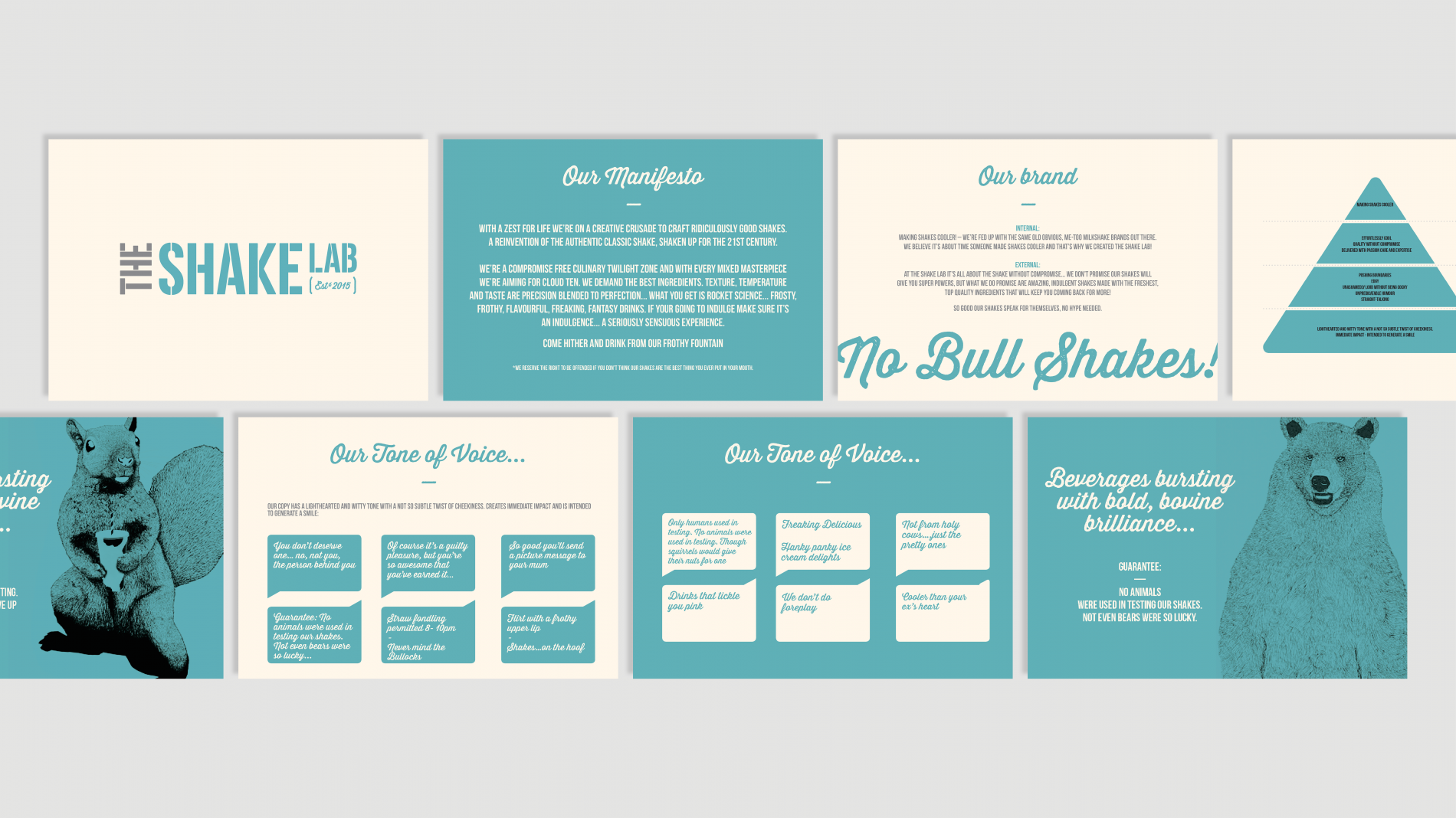 The Shake Lab brand guidelines pages